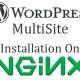 wordpress multisite installation on nginx
